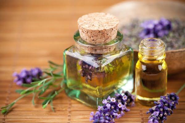 Ngăn ngừa lão hóa hiệu quả từ 9 loại tinh dầu thiên nhiên - Tinh dầu oải hương